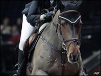 Equestrian rider - generic