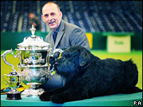 Philippe, a giant schnauzer, with owner Kevin Cullen