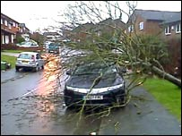 A tree crashed onto a car in Bursledon Green, Hampshire