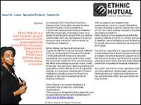 Ethnic Mutual website