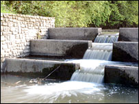 Water feature at Three Brooks nature reserve