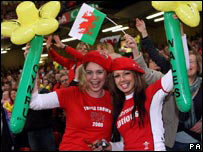 Welsh fans celebrate victory