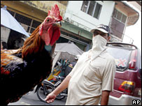 A man passes a chicken at a market in Medan, Indonesia, in Feb 2008