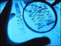 DNA autoradiogram (file photo)