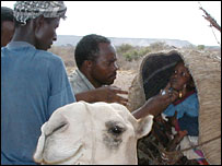 A Somali child receiving a polio vaccination (Picture: WHO)