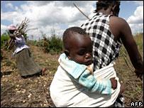 Woman farming in eastern Zimbabwe