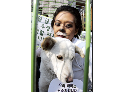 Animal rights activists in Seoul