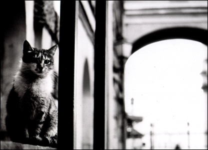 Фото Стаса Бутыгина