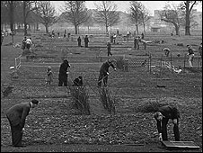 Digging for victory on London's Clapham Common