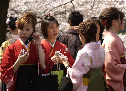 Graduates and cherry trees in Japan (photo James Cope)