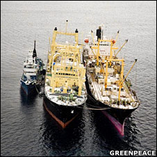 Nisshin Maru and support vessels. Image: Greenpeace