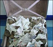 WWF file photo from 2005 shows suitcase full of smuggled cacti impounded at Mexico City's International airport