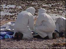 The body parts were found on a beach in Arbroath
