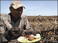 Trabajador de la caña de azúcar en República Dominicana