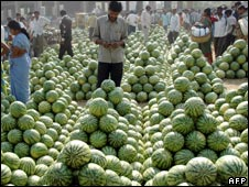 Watermelons at a wholesale fruit market in India