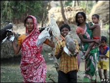 Birds being taken for culling in West Bengal