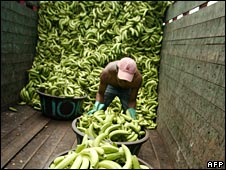 Worker unloads bananas in Honduras