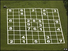 Sudoku puzzle marked out in a field