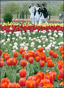 Women in a tulip garden in Kashmir on Wednesday