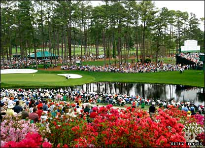 The flowers are in bloom at Augusta