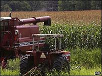 Granja de maíz en EE.UU.