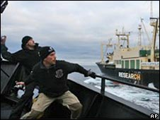 Sea Shepherd activists, 3 March