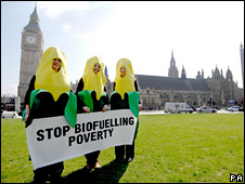 Campaigners against the new biofuel rules outside parliament