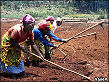 Women working in a field (Image: Agra)