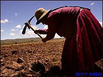 Agricultora boliviana