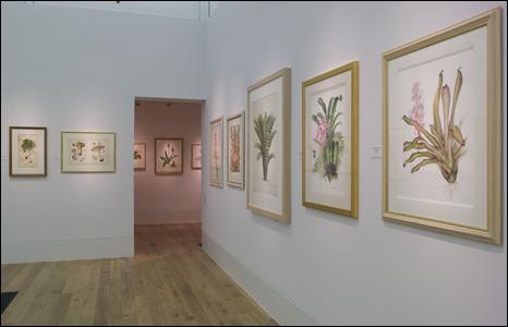 The Shirley Sherwood Gallery