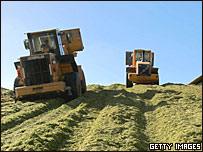 Сельскохозяйственные машины заготавливают корм для скота в Израиле