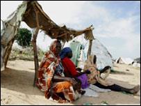 لاجئات دارفور