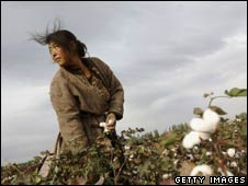 Cotton worker in China