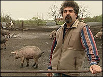 pig farmer in Turkey