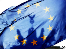 The European Union flag (file image)