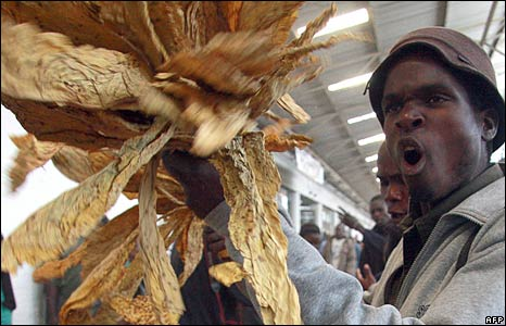 Zimbabwean tobacco farmer expressing anger