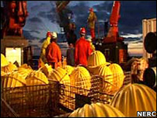 Buoys. Image: Nerc