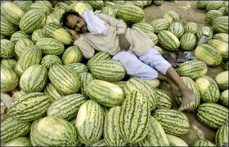Man sleeps on pile of watermelons
