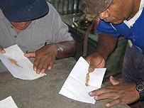 Mineros juntando contando oro.