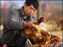 Hombre en un criadero de pollos en Jiangsu, en el este de China