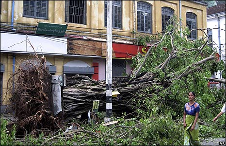 A woman passes a fallen tree in Rangoon on 4 May