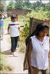 Mujeres Piaroa. Foto cortes�a de PROVITA