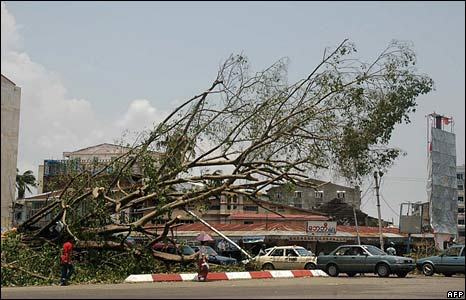 An uprooted tree in Rangoon