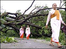 Buddhist nuns walk past a fallen tree in Rangoon (4 May 2008)