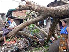 Fallen tree in Burma. Photo released by Democratic Voice of Burma