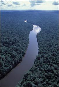R�o Amazonas. Foto: Haroldo Castro.