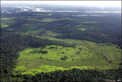 R�o Amazonas y la destrucci�n del bosque