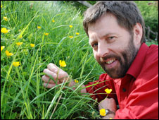 Dr John Warren with some creeping buttercups (picture: Aberystwyth University)