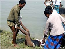 Bangladesh rescue workers carry a body to shore after ferry capsized on river Ghorautra , 13 may 2008