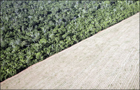 Deforested part of the Amazon seen from the air